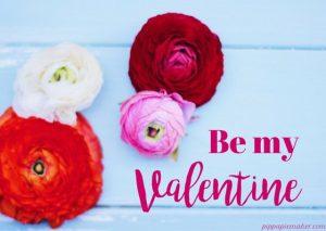 Valentine by pippapiemaker.com