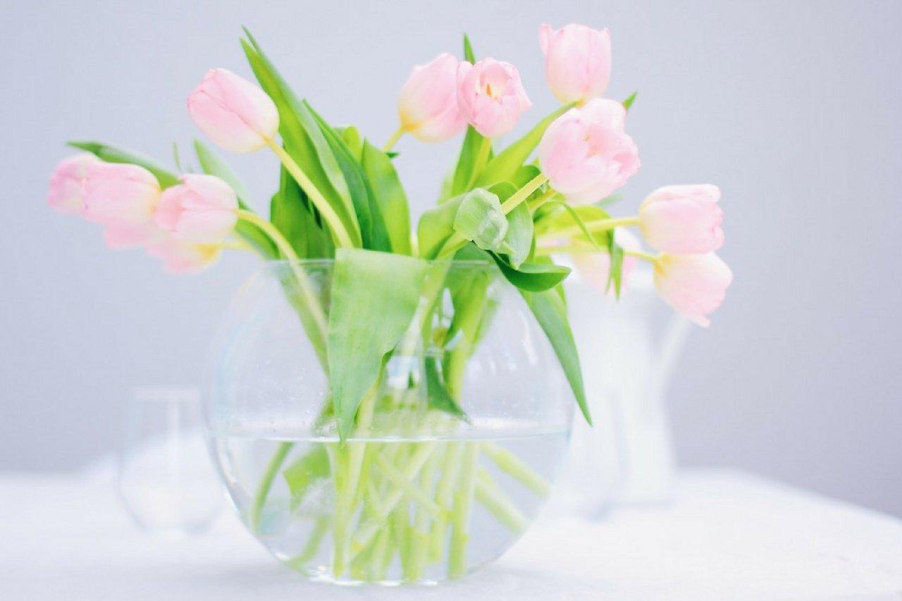 Das ganze Jahr einfach und stilvoll Blumen dekorieren mit diesen 3 Vasen