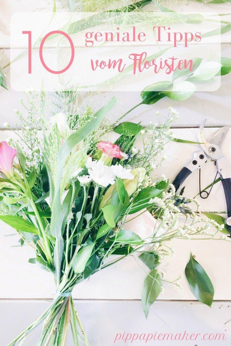 Fragst du dich auch manchmal warum das Blumenwasser stinkt? Warum der Blumenstrauss so schnell verblüht oder die Knospen gar nicht aufgehen? Mit diesen Tipps vom Floristen bleiben deine Blumen viel länger frisch!